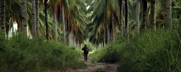 La ligne rouge (1998) de Terrence Malick: la guerre et la philo.