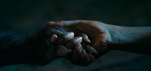 «Les bonnes manières»: ou comment un loup-garou doit apprendre à pas en foutre partout quand il mange ses victimes