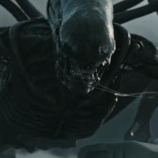 La bande annonce de Alien : Covenant nous dévoile un Paradis plutôt sombre