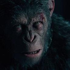 Cesar est de retour dans le nouveau trailer de La Planète des Singes : Suprématie