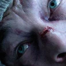 """Comment """"The Revenant"""" est un peu beaucoup pas mal inspiré du cinéma d'Andreï Tarkovski"""