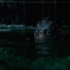 """Nouvelles images du fabuleux """"The Shape of Water"""" de Guillermo del Toro, Lion d'Or à la Mostra de Venise cette année"""