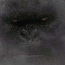 KONG Skull Island : le nouveau trailer vient de sortir