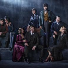 """Jude Law, ce Dumbledore mega classe dans """"Les Animaux Fantastiques 2"""""""