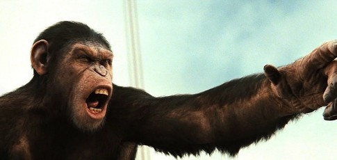 """3 - Comme le nombre de courts-métrages retraçant les dix années séparant """"La Planète des singes : Les Origines"""" de """"La Planète des singes : l'affrontement"""""""